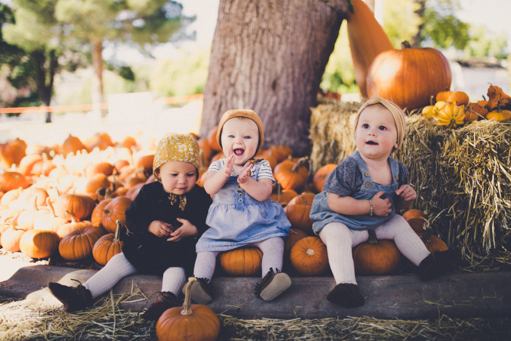 pumpkin patch in st. george utah